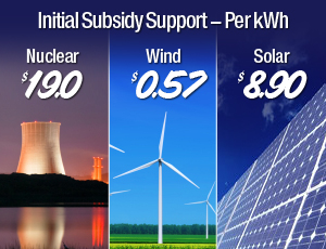 subsidy cost of solar panels