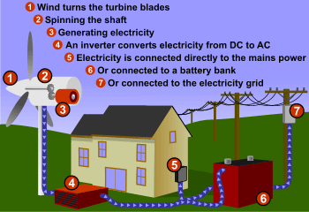 Diagram of how wind energy works